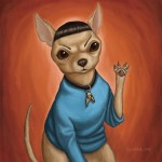 Chihuahua Spock