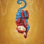 Spideycat